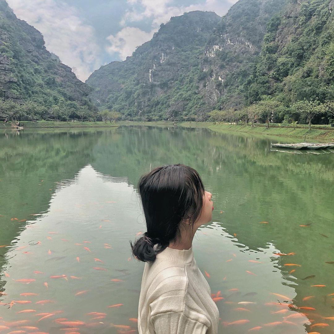 tuyet tinh coc Ninh Binh