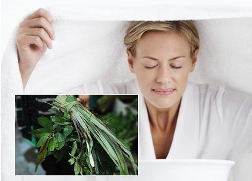 Các loại lá xông hơi giải cảm an toàn, hiệu quả tại nhà