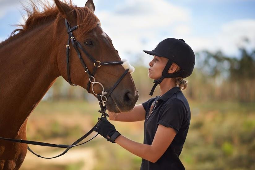 Những anh hùng động vật cứu sống người: Loài vật cũng sống rất tình cảm!