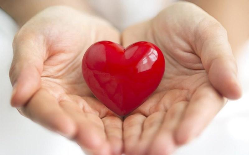 Hỗ trợ chức năng tim mạch