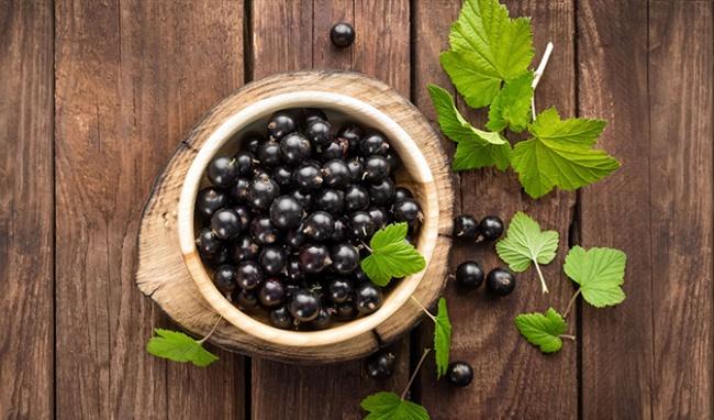 Qủa lý chua đen: Loại quả khai như nước tiểu nhưng giúp kéo dài tuổi thọ