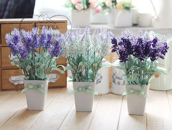 5 loại hoa đuổi muỗi, trồng 1 cây ban công quanh năm không lo muỗi chích