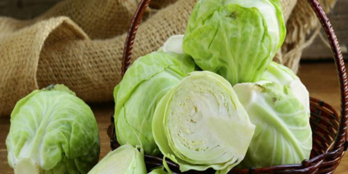 Gợi ý những món ngon từ bắp cải siêu