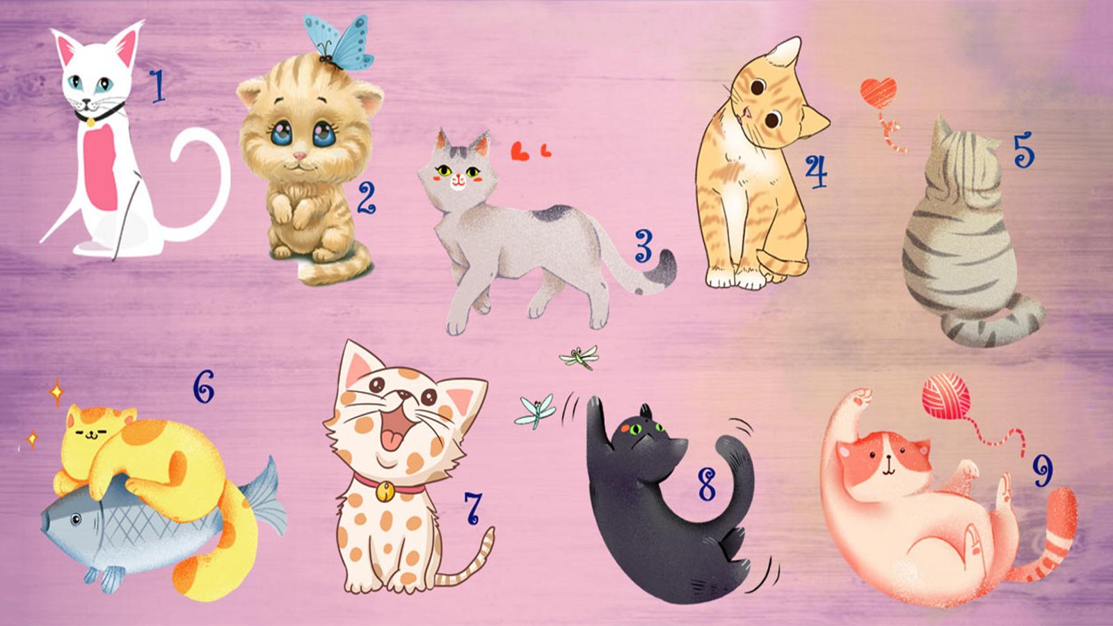 Trắc nghiệm: Chú mèo yêu thích nói gì về kỹ năng giao tiếp của bạn?