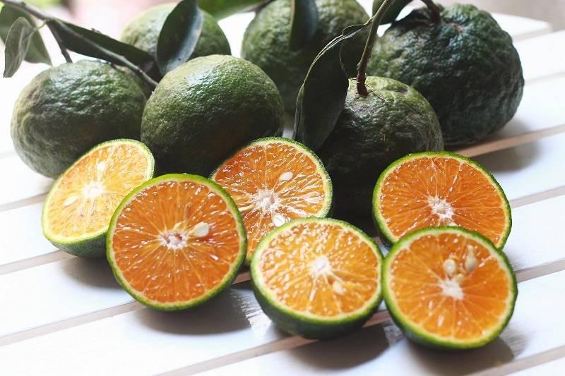 3 loại trái cây mẹ bầu không nên ăn vào buổi tối để tránh gây hại cho thai nhi